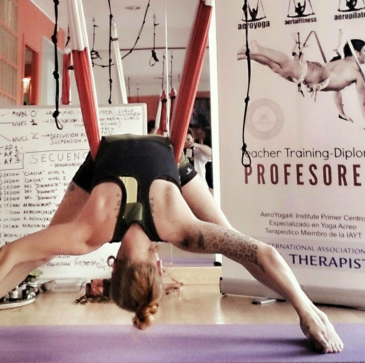 Aerial Yoga Teacher Training Mexico