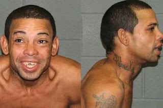 Arrestado tras arrojar un loro a la cara de un policía