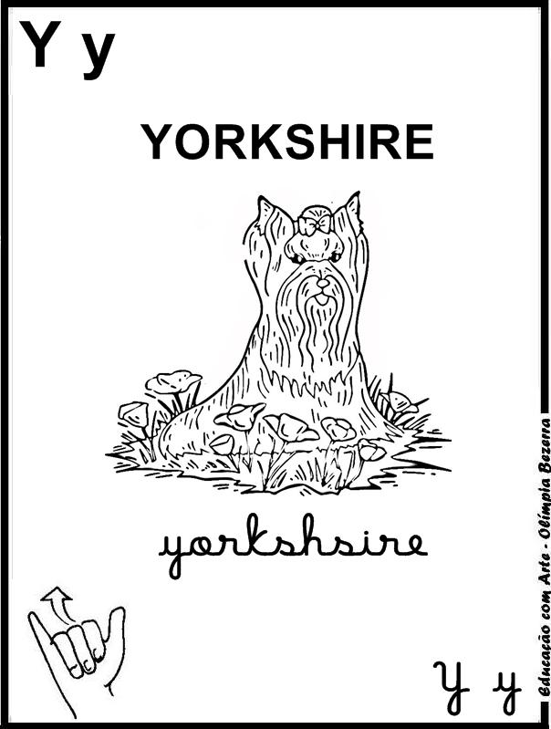 Desenhos de Cães para colorir jogos de pintar e imprimir - imagens para colorir de yorkshire