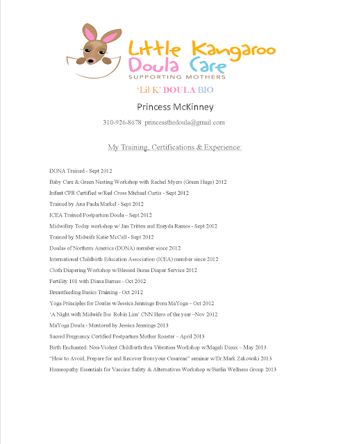 resume certified lactation consultant download image peer