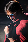 Hero Tarun Stylish Photos from Yuddham Movie-thumbnail-11