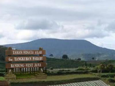 Rental ELF Gunung Tangkuban Perahu