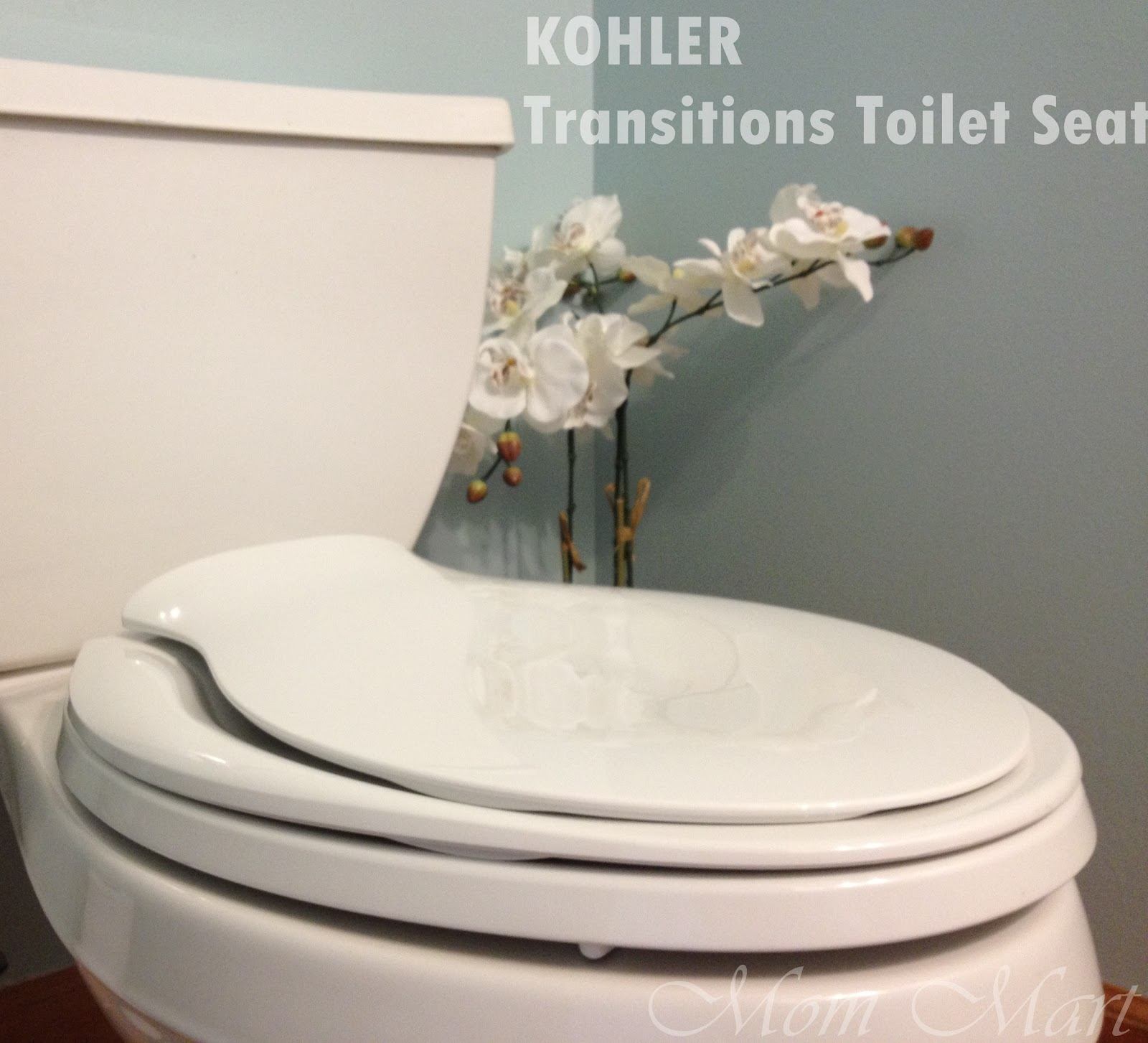 Mom Mart Potty Training Made Easy With The Kohler Transitions