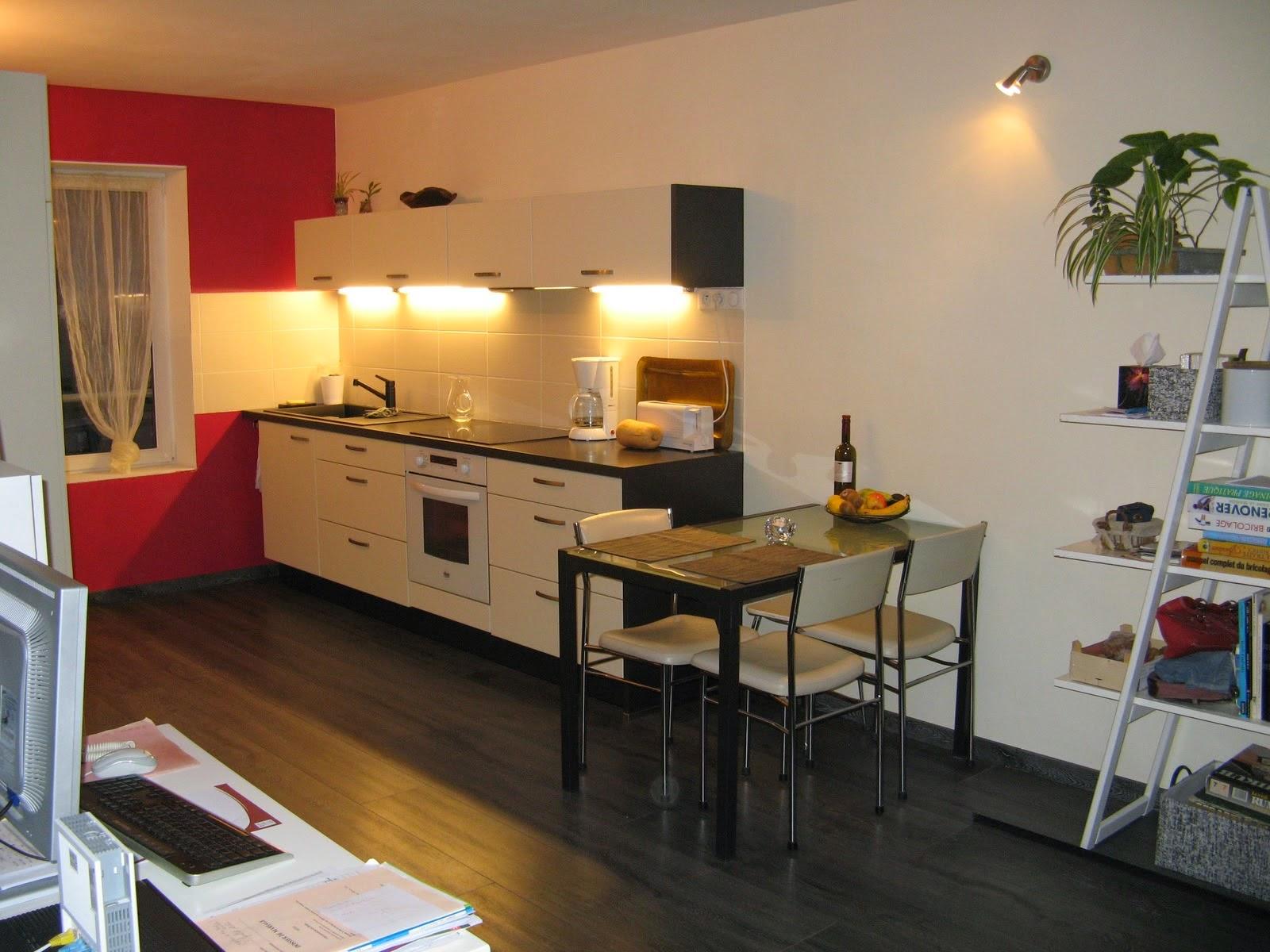 Renovation travaux peinture cuisine paris peintre professionnel cesu - Image peinture cuisine ...