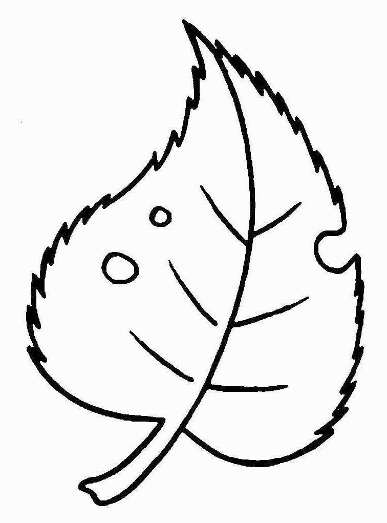 Раскраска листочек для малышей - 3