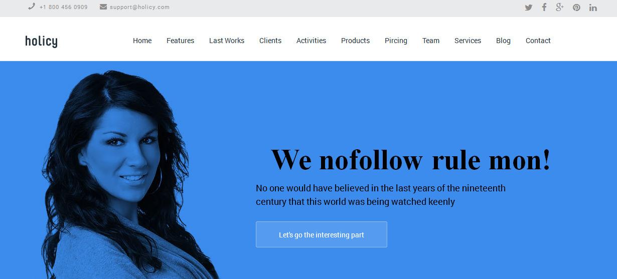 Holicy WordPress theme