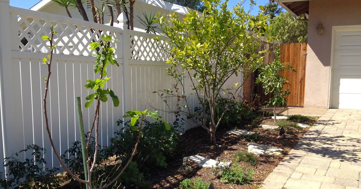 Image Result For Front Yard Garden