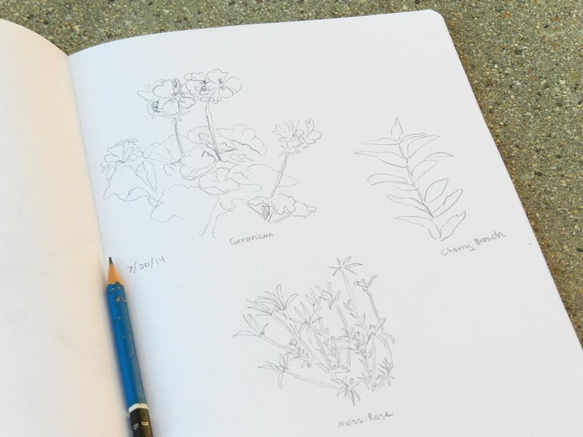 Flower Pencil Sketches