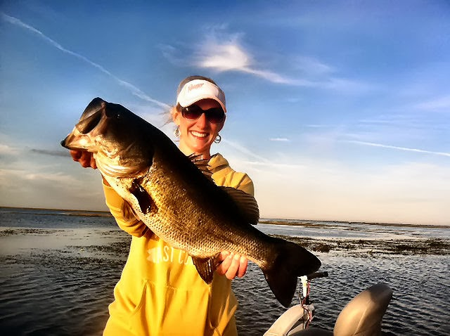 Lake okeechobee bass fishing report lake okeechobee bass for Lake okeechobee fishing guides