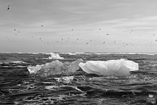 hielo flotando en el mar