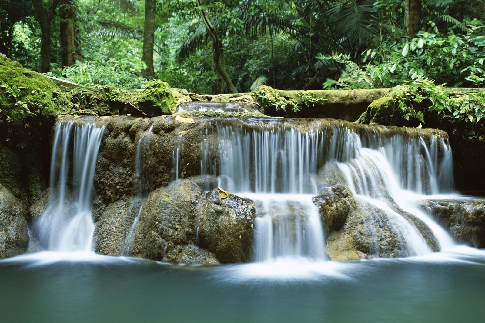 http://3.bp.blogspot.com/-X8-d6RwQlLA/TjLoJL7el_I/AAAAAAAAzQw/4ZDKY2OH92M/s1600/forest_waterfall_wallpaper.jpg