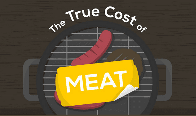 Image: The True Cost of Meat