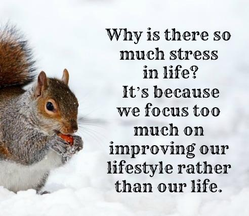 Why is there so much stress in life? It's because we focus too much on improving our lifestyle rather than our life.