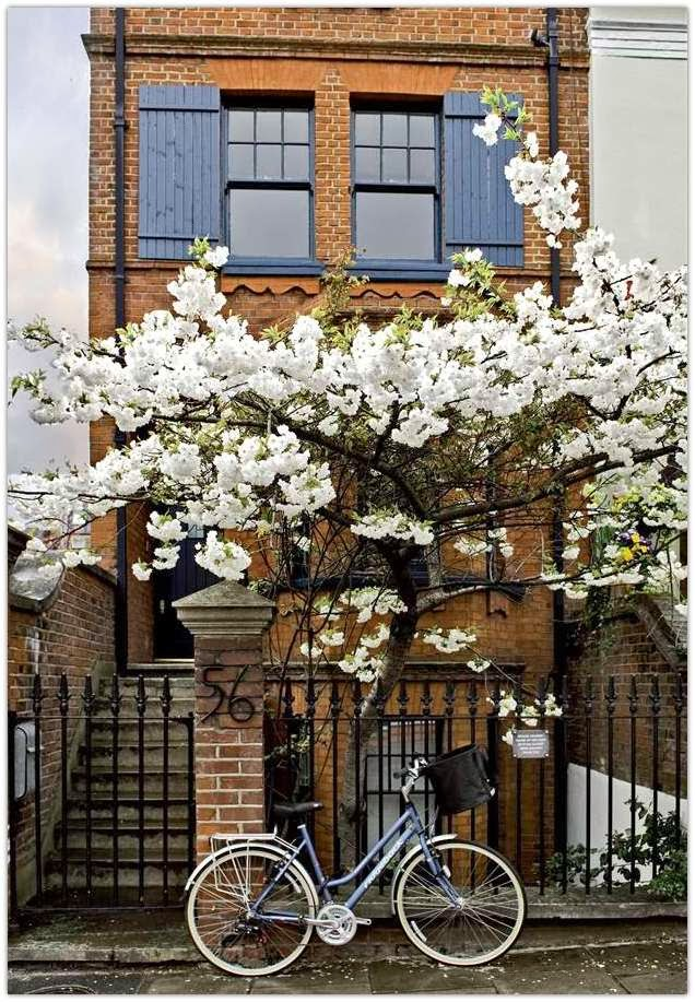 Art Symphony A Brick House In Notting Hill