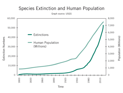 """humans and the decline of biodiversity essay Pyron's essay – with lines such as, """"the only reason we should conserve  biodiversity is for ourselves, to create a stable future for human beings"""" and """"[t]he   what is causing the sharp decline in insects, and why it matters."""