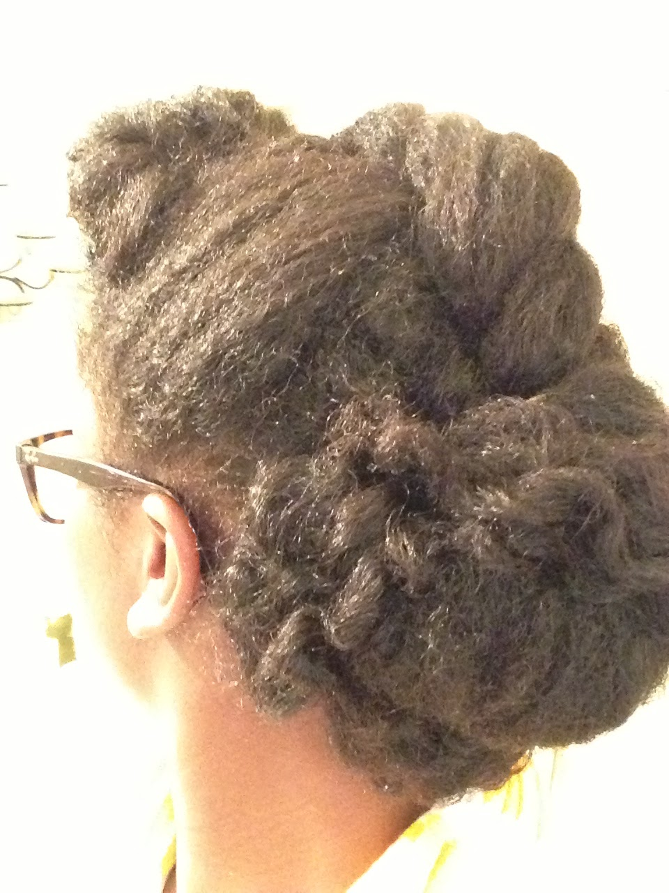 Bun With Hump And Flat Twist Style Points Large Flat Twist