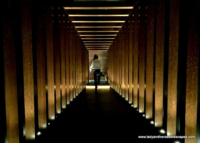 Vii Dubai tunnel to the terrace