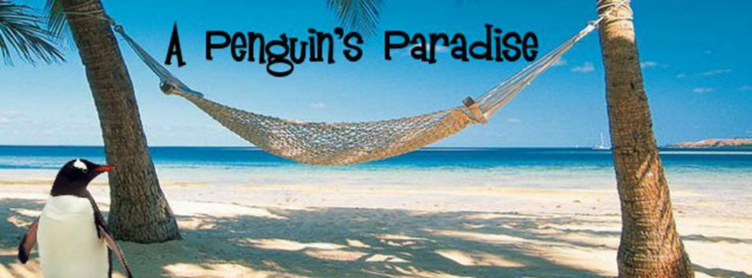 A Penguin's Paradise