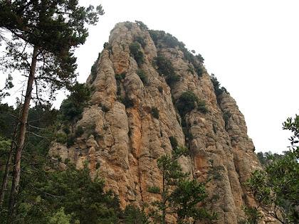En el tram final de la pujada, el Cap de Tastanós se'ns presenta amb tota la seva verticalitat