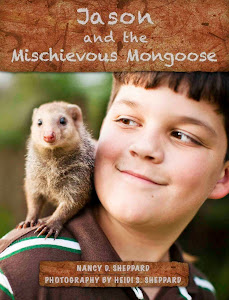 Jason and the Mischievous Mongoose - Kindle Edition