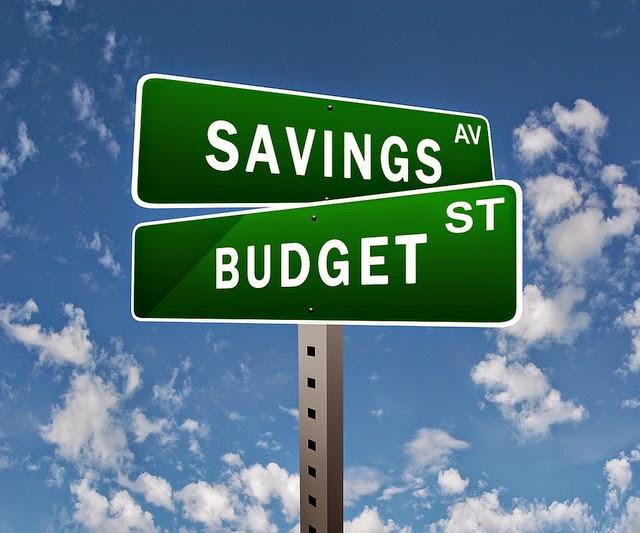 Savings Budget