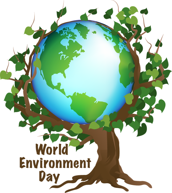 essay on caring for the environment