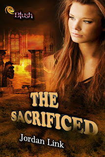 Blog Tour: The Sacrificed by Jordan Link