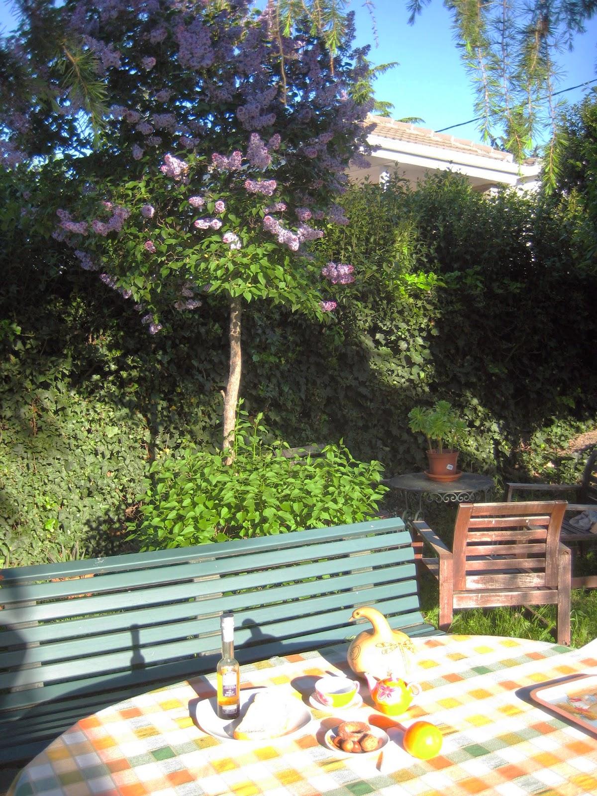 Tu escritora personal desayunos junto al lilo for Jardin lilo
