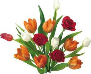 Pra vc uma flor com amor....