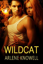 Wildcat