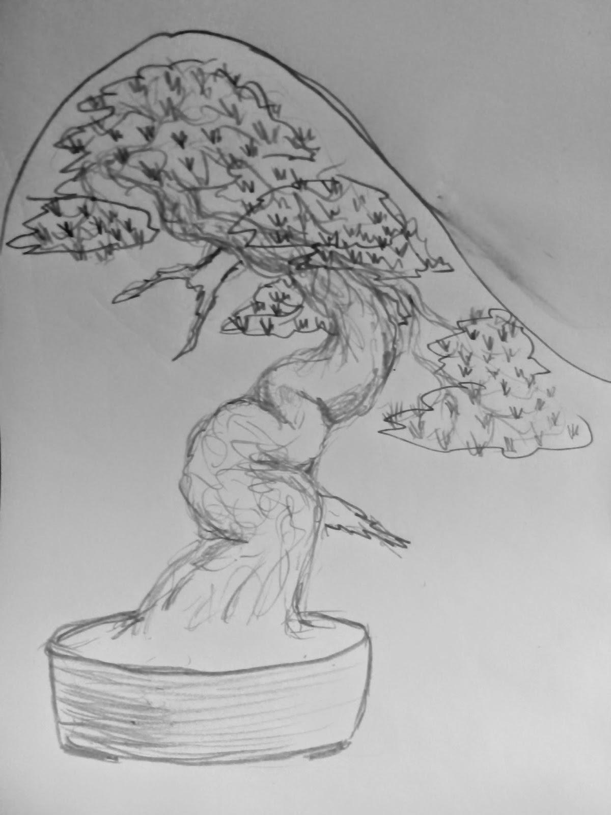 Gross silvestre - diseño segunda parte