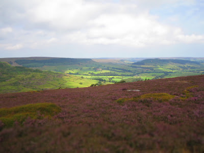 View From Glaisdale Moor in the Great Fryup Beck
