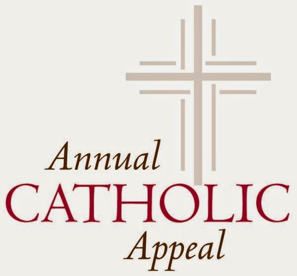 annual catholic appeal essay
