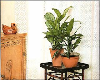 Жилые комнаты обычно светлы и просторны