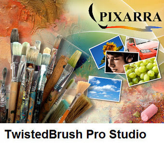 TwistedBrush Pro Studio 19.17 + Portable Full
