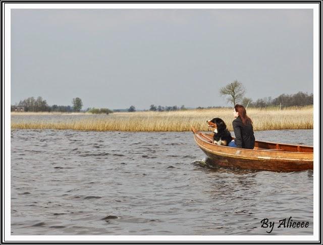 delta-olanda