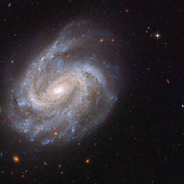 Barred Spiral Galaxy NGC 201