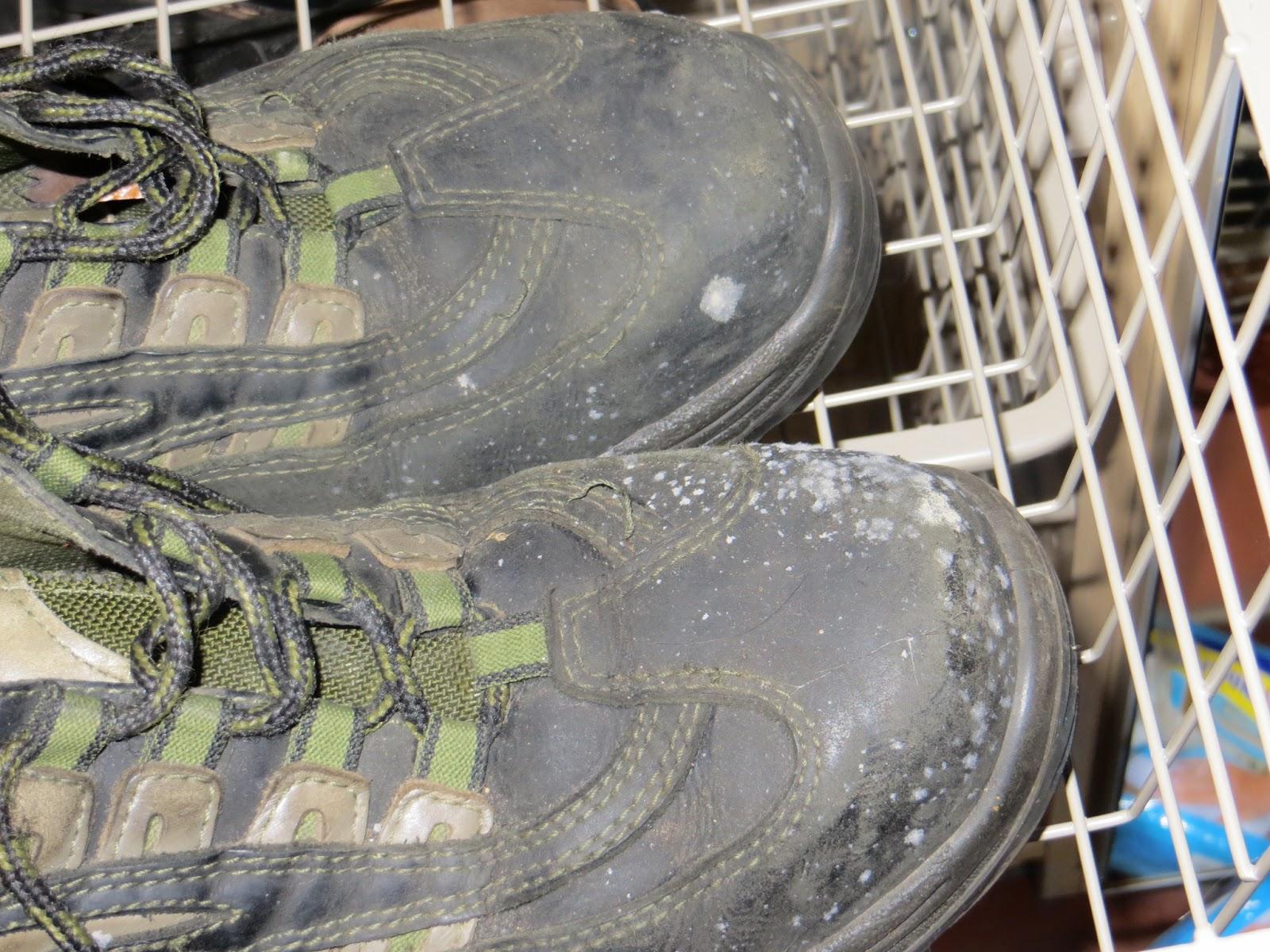 schimmel op schoenen in kast
