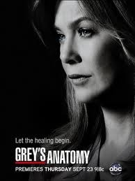 Assistir Greys Anatomy 10 Temporada Online Dublado