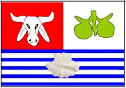 Bandeira Oficial do Conde
