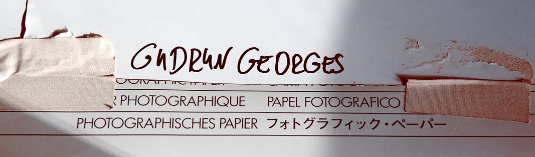 Gudrun Georges