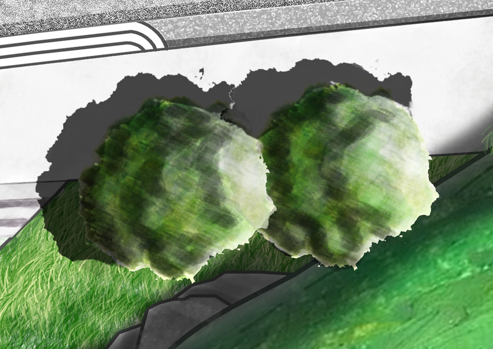 BAHonsGarden Design Year 3 Rendering practice and Photoshop
