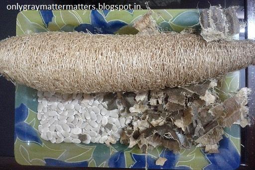 Natural Loofah DIY