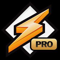 Download winamp pro full version gratis