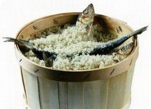 Как солить и вялить рыбу дома