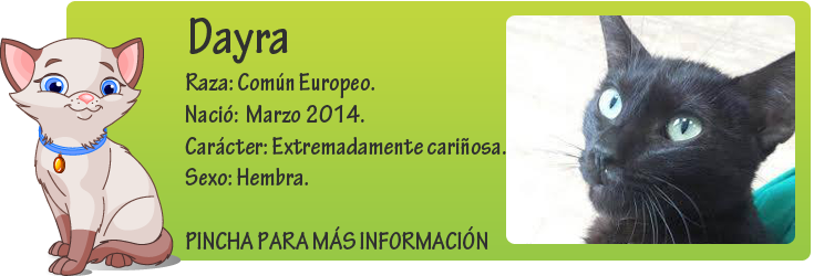 http://mirada-animal-toledo.blogspot.com.es/2014/09/dayra-panterita-en-adopcion.html