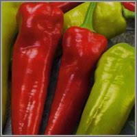 Острый перец сорт «Чилийская жара»