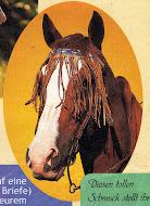 """PINCHA  EN LA IMAGEN PARA JUGAR al """"HORSE JUMPING 2"""""""