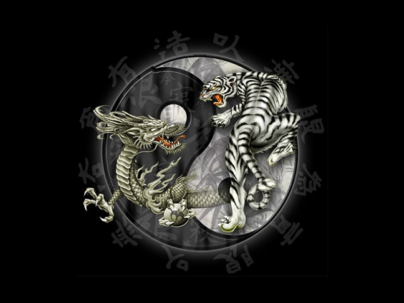 dragon and tiger meaning