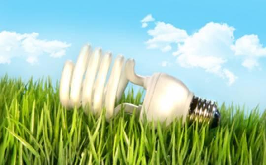 Halógenos, fluorescentes y ahorro energético